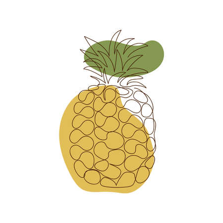 one whole pineapple with leaves drawn outline against a background of two abstract spots of light brown and green color on a white background