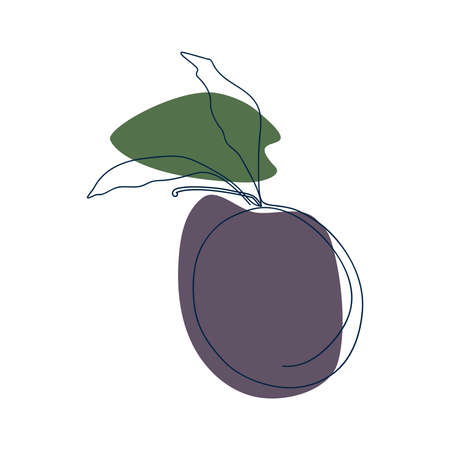 drawn by a solid line plum with leaves on a background of purple and green spots on a white background