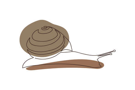 drawn snail with striped shell one solid line on abstract brown spots background on white background