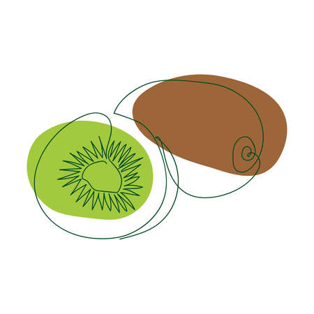 hand-drawn whole kiwi and half kiwi in one solid line against a background of abstract spots of green and brown on a white background
