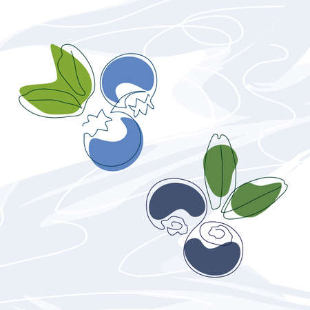 hand-drawn blueberries and blueberries with leaves drawn in one solid line on a background of abstract spots of blue and green on a white background line art Ilustracja