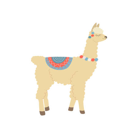 beige llama stands with closed eyes with a rug on his back and colored bubbles on his neck on a white background Ilustracja