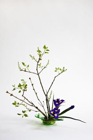 ikebana: Ikebana with irises and lilac on the light background Stock Photo