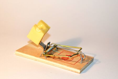 Free cheese in a wooden mousetrap.