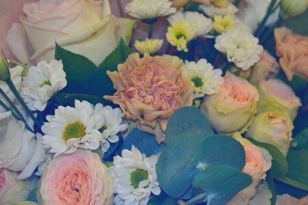 Mehrfarbige vibrierende Gartenblumenbeschaffenheit. 8. März. Standard-Bild