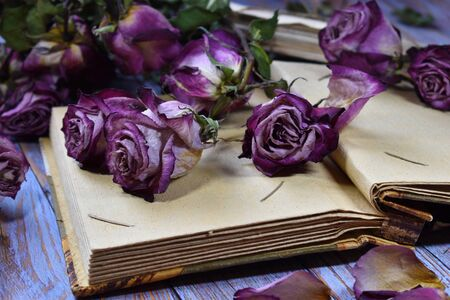 Withered roses on an album close-up. Dying flowers, old letters and a photo album on the table. Vintage beautiful photo of dry buds. The fragility of life. Paper envelopes with letters. Memories of the past.