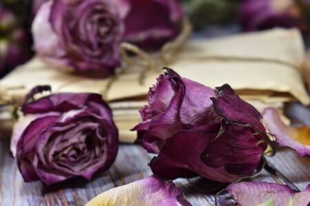Withered buds and rose leaves. Decorative violet flowers on the table. Vintage floral wallpaper. Retro style with dead flowers.