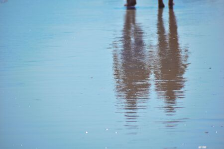 People walk on the beach. The reflection of the feet on the wet ground