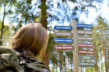 a woman looks at wooden signposts in a summer forest looking for directions.