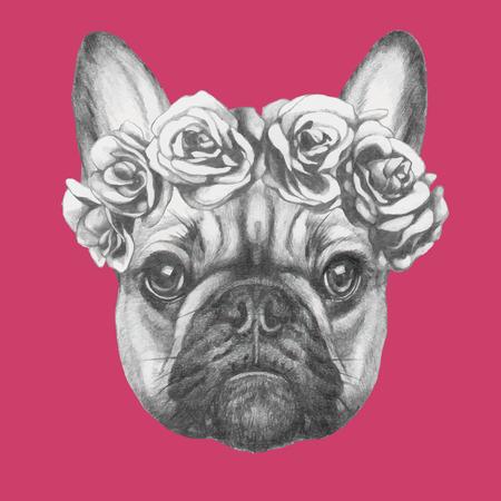 frances: Dibujado a mano retrato de Bulldog francés con rosas. Vectorial aislado elementos.