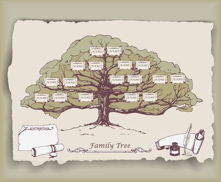 Hand-drawn family tree with decorative elements. Vector Çizim