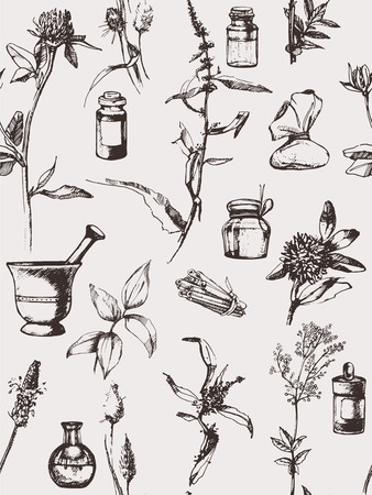 pouch: Hand drawn seamless pattern with  herbs. Vector