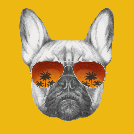 Hand drawn portrait of French Bulldog with mirror sunglasses. Vector isolated elements. Ilustração