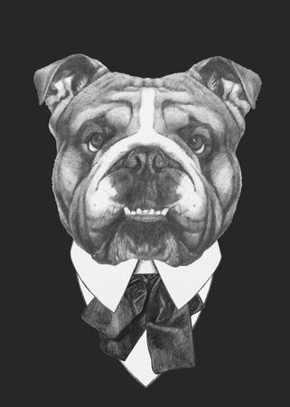 Hand drawn fashion Illustration of English Bulldog. Vector isolated elements. Vectores