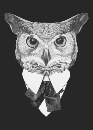 Hand drawn fashion Illustration of Owl. Vector isolated elements.