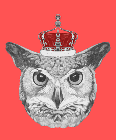 Hand drawn portrait of Owl with crown. Vector isolated elements.