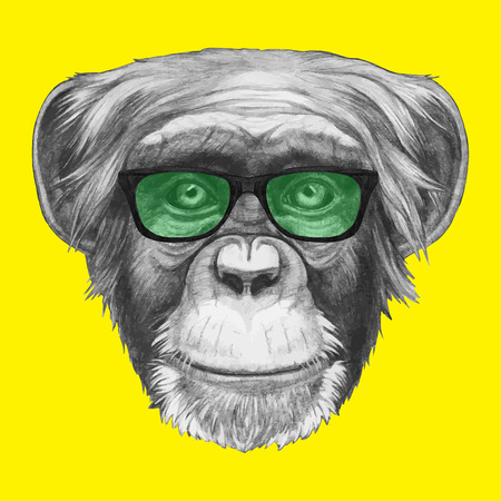 Hand drawn portrait of Monkey with glasses. Vector isolated elements. Illustration