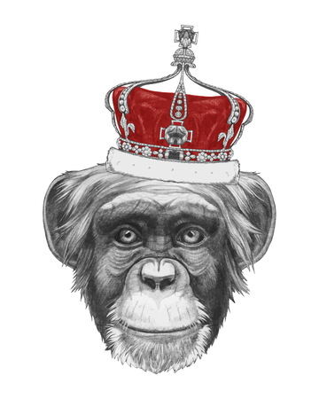 beauty queen: Hand drawn portrait of Monkey with crown. Vector isolated elements.