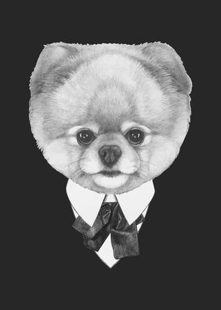 手描きファッション ポメラニアン犬のイラスト。ベクトルの要素を分離しました。  イラスト・ベクター素材