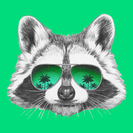 Hand drawn portrait of Raccoon with mirror sunglasses. Vector isolated elements.