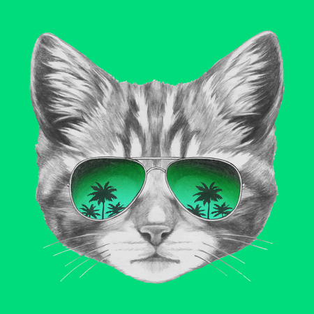 Hand drawn portrait of Cat with mirror sunglasses. Vector isolated elements. Stock Illustratie