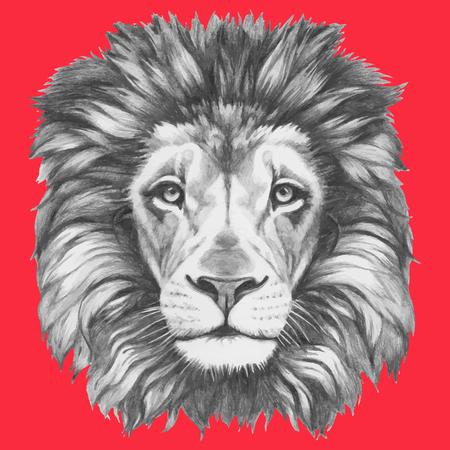 Hand drawn portrait of Lion. Vector