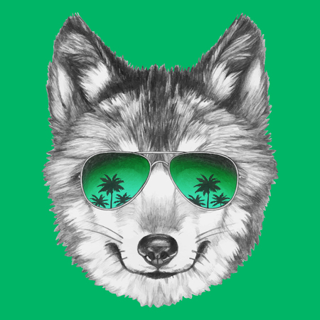 Portrait of Wolf with mirror sunglasses. Hand drawn illustration. Vector Stock Illustratie
