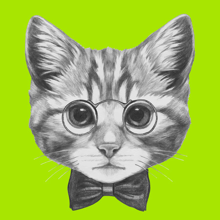 Hand drawn portrait of Cat with glasses and bow tie. Vector isolated elements. Stock Illustratie