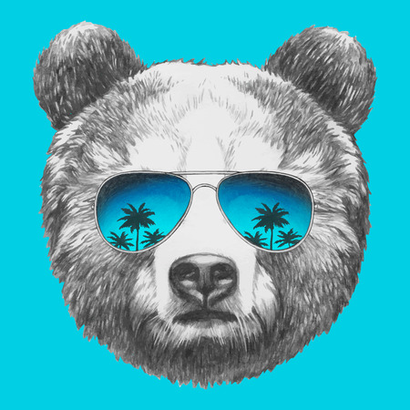 Hand drawn portrait of Bear with sunglasses. Vector isolated elements.