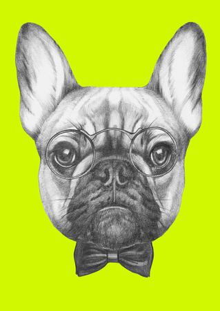 Disegno originale del Bulldog francese con occhiali e papillon. Isolato su sfondo colorato Archivio Fotografico - 70408413