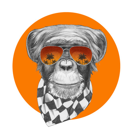 Original drawing of Monkey with scarf and mirror sunglasses. Isolated on colored background. Stock Photo