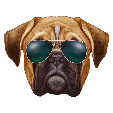 boxer dog: Original drawing of Boxer dog with sunglasses. Isolated on white background.