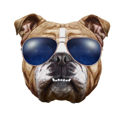 Originele tekening van Engelse Bulldog met zonnebril. Geïsoleerd op witte achtergrond Stockfoto