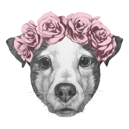 Original drawing of Jack Russell with floral head wreath. Isolated on white background.