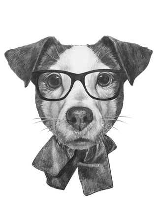 Portrait of Jack Russell  with glasses. Hand-drawn illustration
