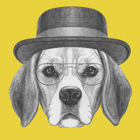 Portrait of Beagle Dog with hat and glasses. Hand drawn illustration.