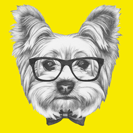 Portrait of Yorkshire Terrier Dog with glasses and bow tie. Hand drawn illustration.