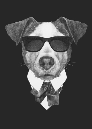 Portrait of Jack Russell in suit. Hand drawn illustration.