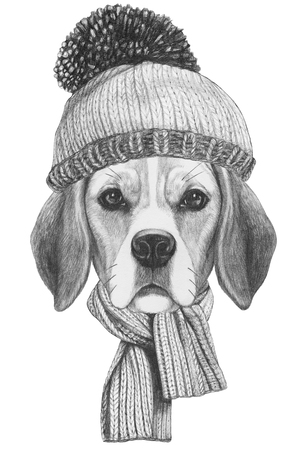 Portrait of Beagle Dog with scarf and hat. Hand drawn illustration. Banco de Imagens