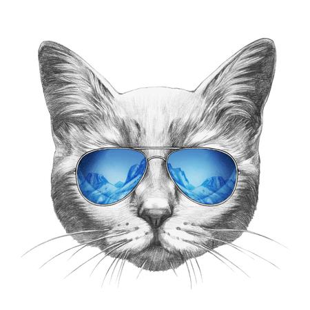 Portrait of Cat with mirror sunglasses. Hand drawn illustration. Stock Photo