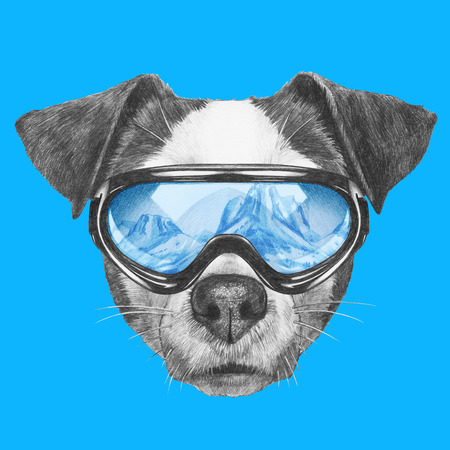Portrait of Jack Russell Dog with ski goggles. Hand drawn illustration. Stock Photo