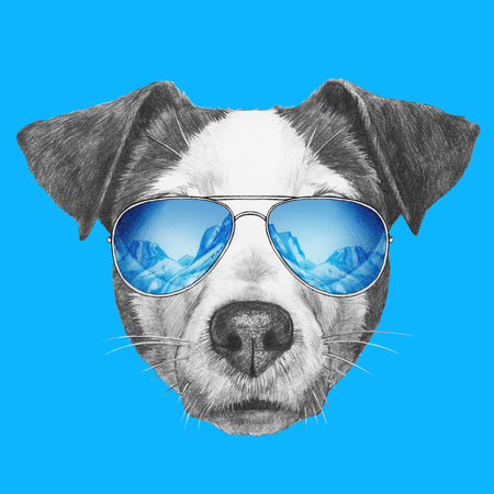 Portrait of Jack Russell Dog with mirror sunglasses. Hand drawn illustration.