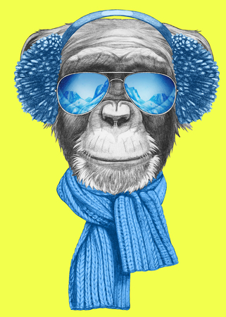 Portrait of Monkey with scarf, earmuffs and sunglasses. Hand drawn illustration. Stock Photo