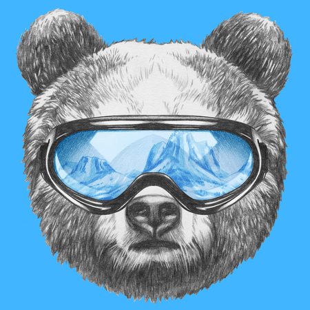 Portrait of Bear with ski goggles. Hand drawn illustration.