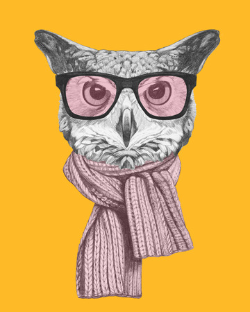 Portrait of Owl with glasses and scarf. Hand drawn illustration.