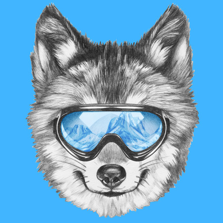 Portrait of Wolf with ski goggles. Hand drawn illustration. Stock Photo