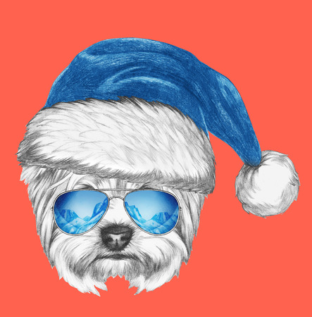 yorkshire terrier: Portrait of Yorkshire Terrier Dog with mirror sunglasses and Santa Hat . Hand drawn illustration. Stock Photo