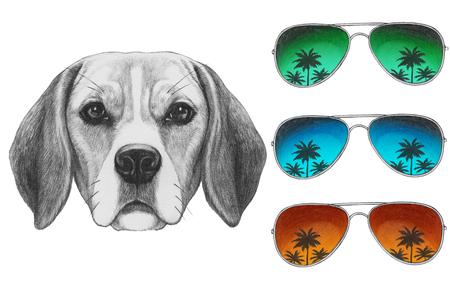 Portrait of Beagle Dog with mirror sunglasses. Hand drawn illustration. Banco de Imagens
