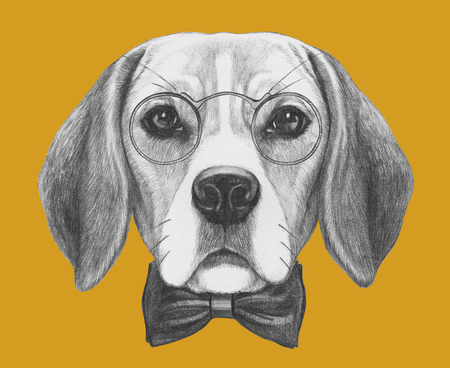 beagle puppy: Portrait of Beagle Dog with glasses and bow tie. Hand drawn illustration.