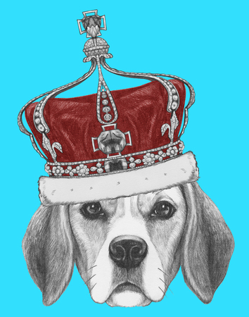 Portrait of Beagle Dog with crown. Hand drawn illustration.
